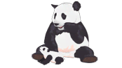 celebritites-internet-cute-sneezing-panda.png?height=98