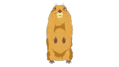 dramatic-look-gopher.png?height=98
