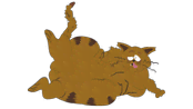 animals-fat-cat.png?height=98