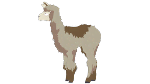animals-teresa-llama.png?height=165