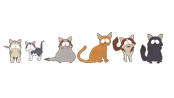 non-human-wild-animals-cats.png?height=98